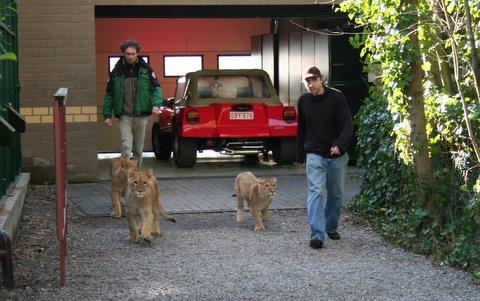 voorzitter instantie voor dierenwelzijn
