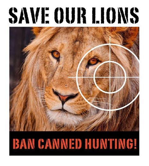 Save Our Lions -  Ban Canned Hunting